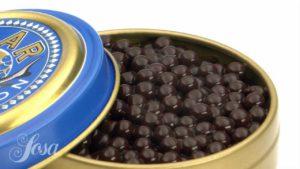 какао икра сферы молекулярная икра из какао как сделать рецепты молекулярный бар сферификация